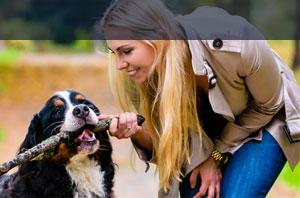 Hundehalterhaftpflicht IDEAL Versicherung