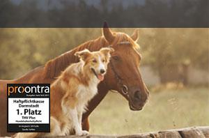 Tierhalterhaftpflichtversicherung Die Haftpflichtkasse